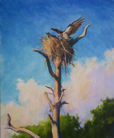 Osprey Nest at Kiawah