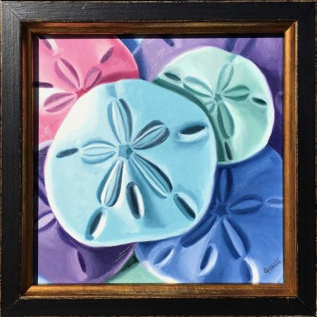 Sand Dollar Color Study